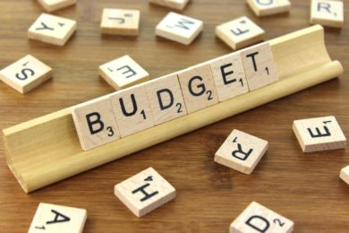 WHAT CAN SMES EXPECT FROM BUDGET 2017?